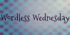wordless_wednesday