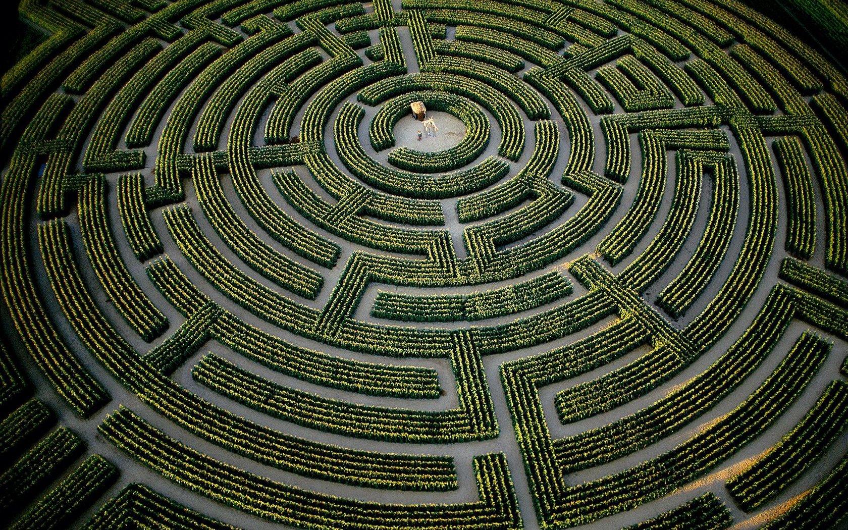 the-largest-plant-maze-in-the-world-at-reignac-sur-indre-indre-et-loire-department-france