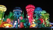 Lighted Life Aquatic in Dubai Garden Glow