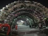 Floral arc in Dubai Miracle Garden