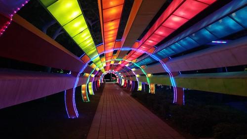 Lighted arc in Dubai Garden Glow